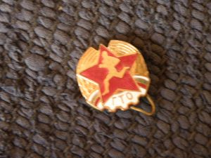Военни отличия-значки