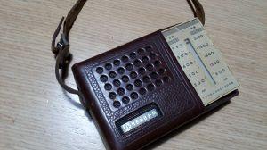 Mini tranzistor НЕЙВА -М