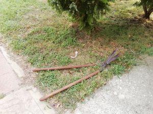 Голяма старинна ножица за храс храсти
